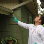 also providing pest control for san antonio tx